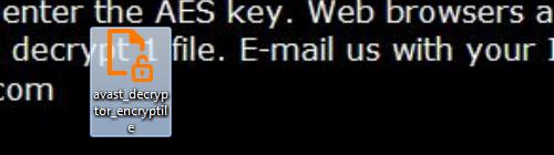 04-run-decryptor-step-1.png