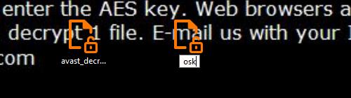 04-run-decryptor-step-3.png
