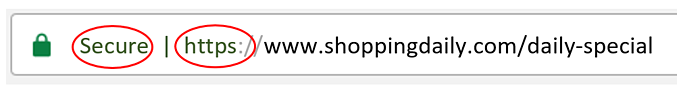 shopping-blog-https.png